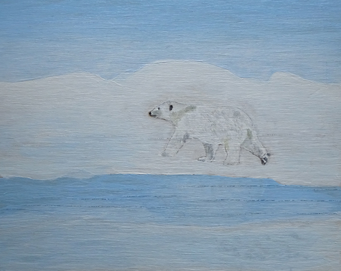 Polar bear 30 x 25 cm. Acrylic on wood